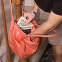 purse